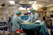 Erstmals in Deutschland Gebärmutter transplantiert