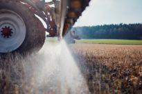 Umweltministerin stemmt sich gegen Glyphosat