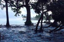 Marshallinseln: Aufbäumen gegen den Untergang