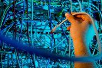 Deutscher Verfassungsschutz: Chinesen nutzen neue Tarnung für Cyberangriffe