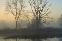 Gedanken zum Totensonntag: Ein Leben auf das Ende hin