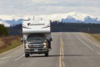 Roadtrip durch Alaska: Auf dem Highway ist der Bär los