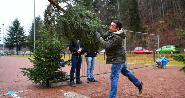 Wettkampf in der Pfalz: Wenn der Weihnachtsbaum zum Speer wird