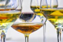 Weinsuche via App: Mädelsabend oder Grillen auf der Terrasse?