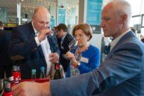 Weinjahrgang 2017: Bei Spitzenweinen wird die Menge knapp