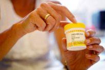 Medizinisches Cannabis: Hype um den Hanf