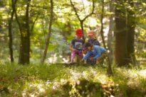 Freizeit mit Kindern: Familienausflug ins Grüne