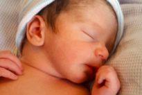 Künstliche Befruchtung: Acht Millionen Menschen aus dem Reagenzglas