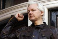 Wikileaks-Gründer: Ecuadors Präsident will Assange Asyl entziehen
