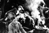 Das entschlüsselte Mohn-Genom: Vom Fluch und Segen des Opiums