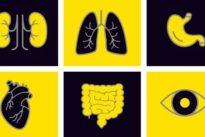 Bereitschaft zur Organspende: Und wenn man selbst in Not wäre?