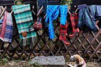 Alle Jahre wieder: Das Schottenkaro ist auch was für Engländer