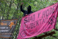 Kommentar zum Hambacher Forst: Wie Reichsbürger mit Rastas
