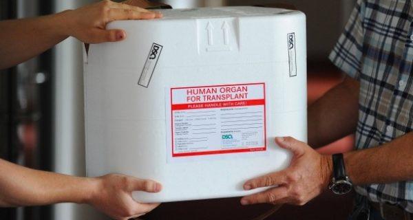 Realität der Organspenden: Heute nur schlechte Lungen im Angebot