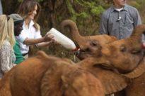 Schulbücher und Elefantenbabys: Melania Trump solo in Afrika