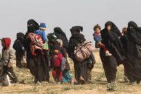 """Ehemalige IS-Kämpfer: """"Wenn sie reinwollen, müssen wir sie auch reinlassen"""""""