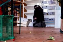 Sozialpolitik: Wohltätiger Staat ja, lästiger Staat nein?