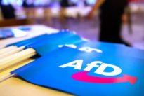 Sonntagstrend: AfD sinkt auf niedrigsten Wert seit einem Jahr
