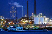 Ärger um Monsanto: Bayer bittet um Entschuldigung
