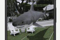 Neue Produkte von Google: Was macht eigentlich der Weiße Hai auf der Bühne?