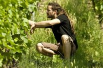 Familie Dautel: Rebellen mit Weingut