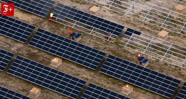 Nachhaltigkeit fördern: Grüne Welle am Finanzmarkt