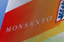 Monsanto: Französische Justiz leitet Ermittlungen gegen Bayer-Tochter ein