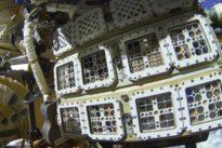"""Experiment """"Biomex"""": Das Leben im Weltall scheint möglich"""