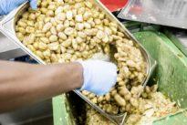 Lebensmittelverschwendung: Wird Containern in Hamburg bald legal?