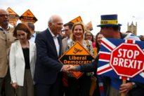 Britische Liberaldemokraten: Wie ein Phoenix aus der Asche