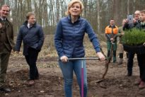 """""""Dringender Handlungsbedarf"""": Klöckner will mehrere Millionen Bäume pflanzen"""