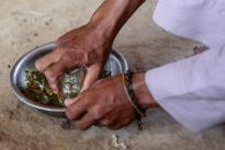 UN-Bericht: Klimawandel gefährdet Kampf gegen Hunger
