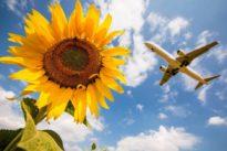 """Kein """"Greta-Effekt"""": Trotz ihrer Angst ums Klima fliegen die Deutschen immer öfter"""
