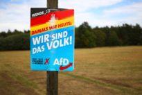 Sonntagsfrage: AfD wird in Ostdeutschland stärker