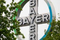 Unkrautvernichter Dicamba: Bayer und BASF sollen Millionenstrafe in Amerika zahlen