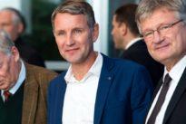 """Sitzung des Parteivorstands: AfD-Chef Meuthen schlägt Auflösung des """"Flügels"""" vor"""