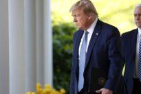 Corona-Richtlinien: Trump will Vereinigte Staaten in drei Phasen wieder öffnen