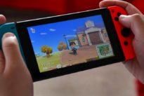 Animal Crossing: Jetzt wird mit Taranteln und Rüben spekuliert